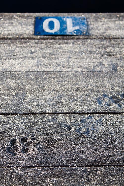 frost, tassavtryck