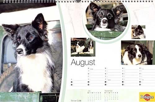 calendar_2003